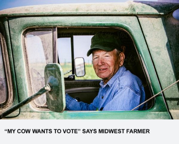 """""""My Cow Wants To Vote"""" Says Midwest Farmer"""